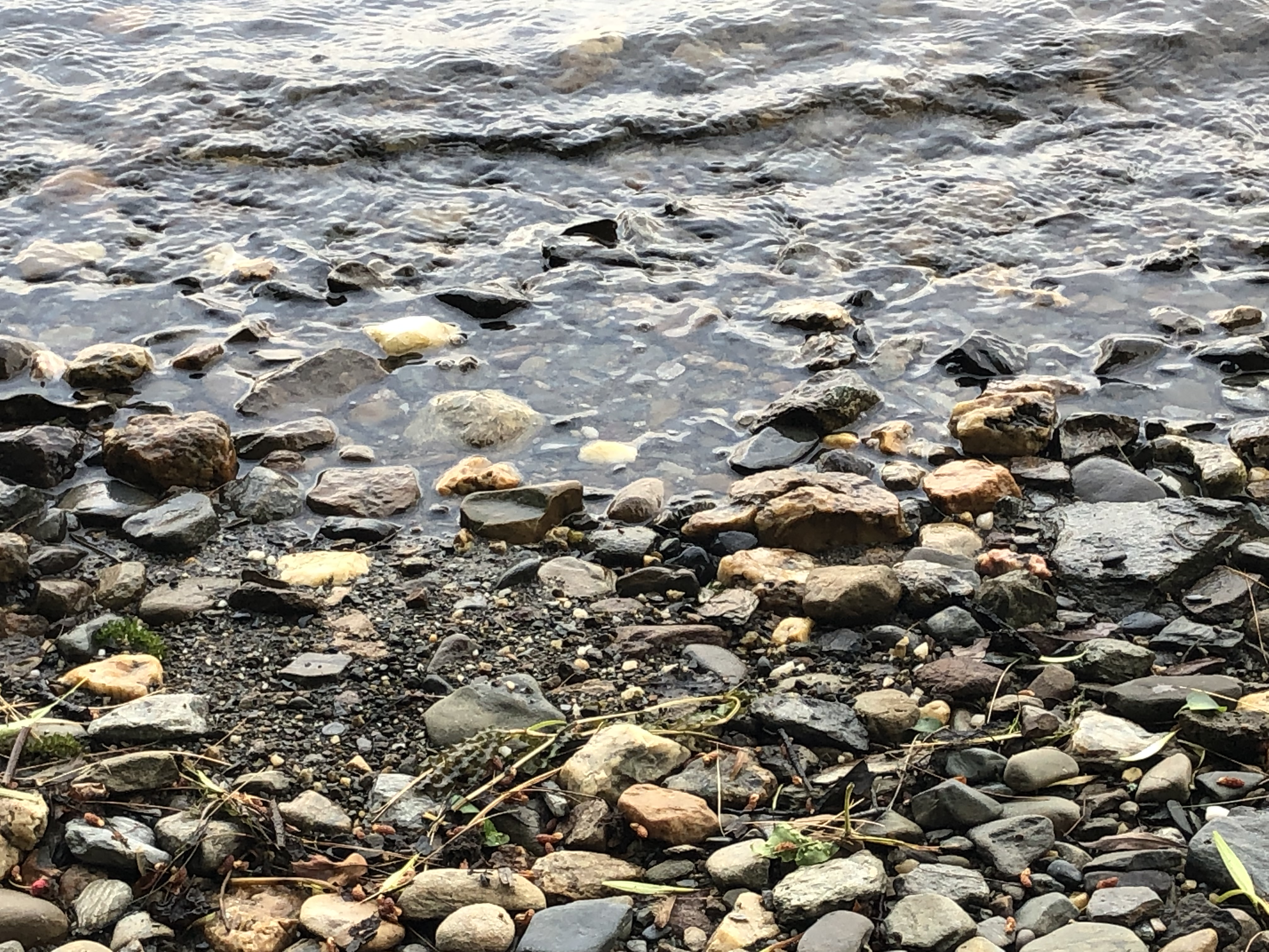 lake water crawling over pebbles on the shore