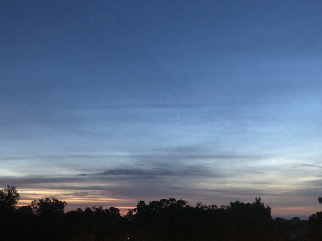 hazy clouds over the trees after sunset